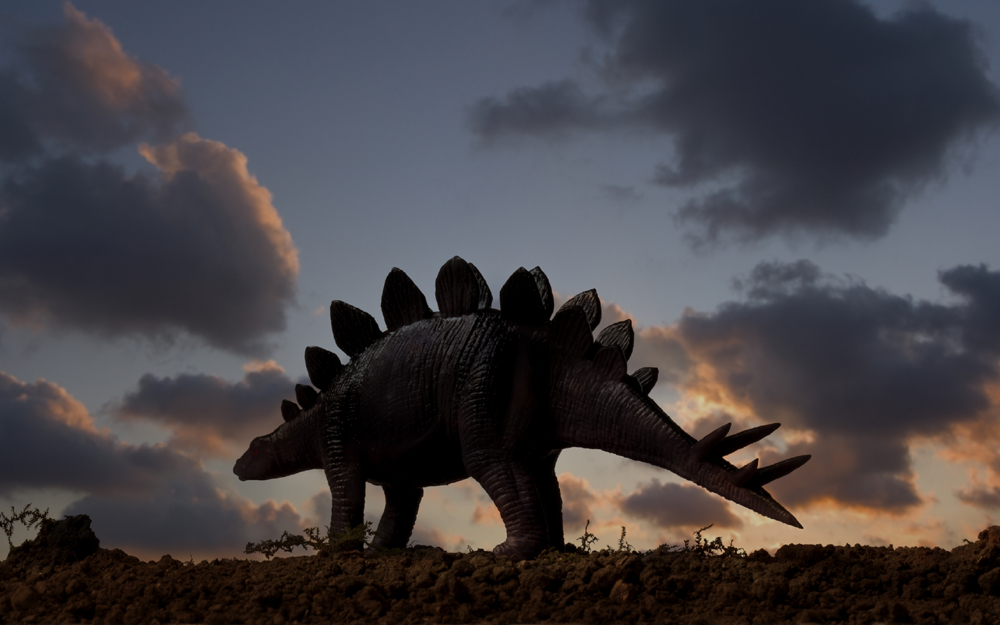 Ankylosaurs Commonly Are Depicted As Prey To Larger Carnivorous Dinosaurs But One Species May Have Been The Hunter Not Hunted
